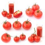 De inzameling van de tomaat stock foto