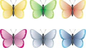 De inzameling van de vlinder Stock Afbeeldingen