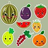 De Inzameling van de fruitsticker Inzameling van stickers van vruchten in een witte slag, in een vlakke stijl vector illustratie