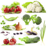 De inzameling van groenten Royalty-vrije Stock Foto