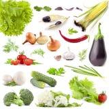 De inzameling van groenten Royalty-vrije Stock Afbeeldingen