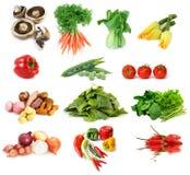 De Inzameling van groenten Stock Foto's