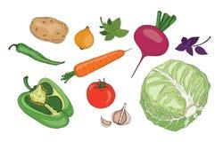 De inzameling van groenten stock foto