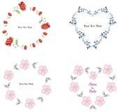 De inzameling van het bloemkader op de witte achtergrond royalty-vrije illustratie