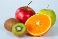 De inzameling van het fruit royalty-vrije stock foto