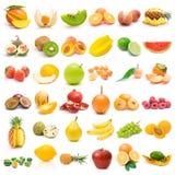 De inzameling van het fruit Stock Foto