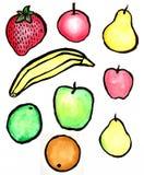 De Inzameling van het fruit Stock Fotografie