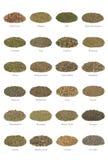 De Inzameling van het kruid Stock Foto's