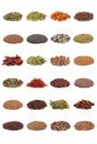 De Inzameling van het kruid en van het Kruid stock afbeelding