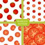 De inzameling van het Seamlespatroon met tomaten Royalty-vrije Stock Fotografie