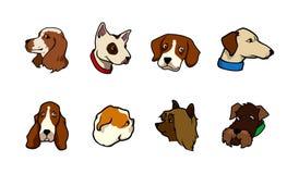 De inzameling van honden Stock Afbeeldingen