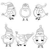 De inzameling van Kerstmisvogels voor het kleuren van boek vector illustratie
