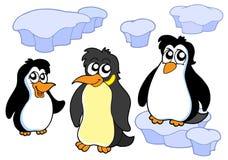 De inzameling van pinguïnen Royalty-vrije Stock Foto's