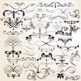 De inzameling van vectorwijnoogst bloeit en wervelingselementen Royalty-vrije Stock Foto