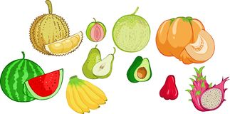 De inzameling van vruchten Stock Afbeeldingen