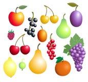 De inzameling van vruchten en van bessen stock illustratie