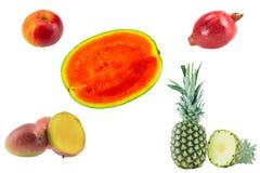 De inzameling van vruchten Reeks van tropische geïsoleerde vruchten en één appel stock afbeelding