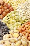 De inzameling van zaden en van noten royalty-vrije stock foto
