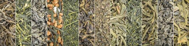 De inzamelingsbanner van de los blad groene thee Stock Afbeeldingen