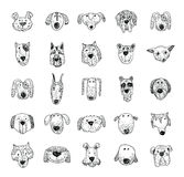 De inzamelingspictogrammen van het hondras - vectorillustratie Stock Foto