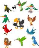 De inzamelingsreeks van beeldverhaalvogels vector illustratie