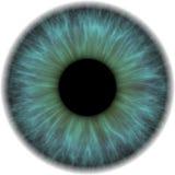 De iris van het oog Royalty-vrije Stock Fotografie