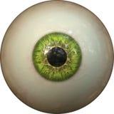 De iris van het oog Royalty-vrije Stock Foto
