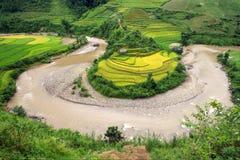De irrigatie en de Padievelden van de rivierkromme terrasvormig in Vietnam Royalty-vrije Stock Afbeelding