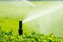 De irrigatie van de tuin Stock Foto