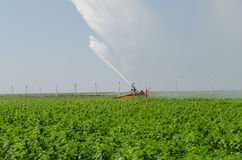 De irrigatie van het water op Landbouwgrond Flevoland Royalty-vrije Stock Foto