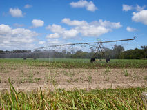 De irrigatiesproeier van het Ausralianwater royalty-vrije stock foto