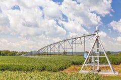 De irrigatiesysteem van de centrumspil Stock Fotografie