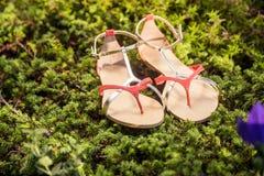 De Italiaanse schoenen, modieuze sandals liggen op het gras royalty-vrije stock fotografie