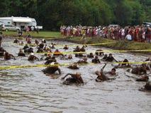 18de Jaarlijkse Marine Mud Run - Modderkuil Royalty-vrije Stock Fotografie