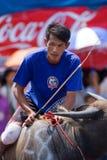 De jaarlijkse Rassen van Buffels in Chonburi 2009 Stock Foto