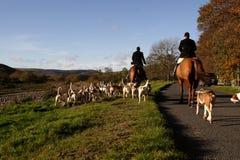De jacht met honden Stock Afbeelding