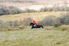 De jacht van de vos Royalty-vrije Stock Afbeeldingen
