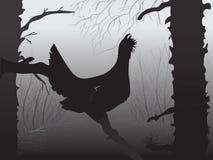 De jacht voor houten hoen Jagers open seizoen De vogel zit op een boomtak Het pijnboom boswild Vector royalty-vrije illustratie