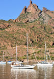 De jachthaven van San Carlos, Sonora Mexico stock fotografie