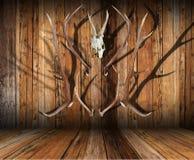 De jachttrofeeën op hout royalty-vrije stock foto's