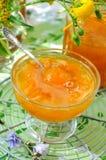 De jam van de abrikoos Royalty-vrije Stock Afbeelding