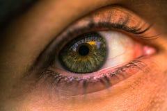 21 de janeiro de 2017: Olho verde de uma menina, Suécia Imagens de Stock