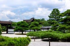 De Japanse bomen van de tuinpijnboom, Kyoto Japan Royalty-vrije Stock Foto's