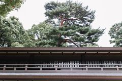 De Japanse bouw in traditionele stijl met pijnboombomen op achtergrond stock foto's