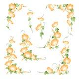 De Japanse diameter van de de gloriedecoratie van de stijlochtend, stock illustratie