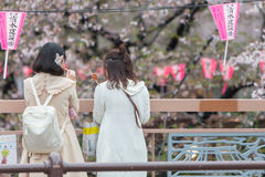 De Japanse meisjes zien schoonheid van Kersenbloesem of Sakura in Meguro Royalty-vrije Stock Afbeelding
