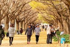 De Japanse mensen die in Meiji Jingu Gaien lopen Royalty-vrije Stock Afbeeldingen