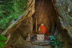 De Japanse Standbeelden van Boedha (Jizo Bodhisattva) in Koyasan (MT Koya) gebied Stock Foto's
