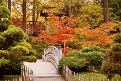 De Japanse Tuin van de herfst royalty-vrije stock afbeelding