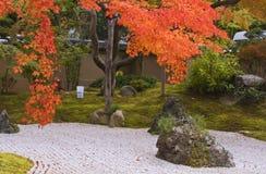 De Japanse tuin van de herfst Stock Fotografie